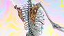 isabell-bullerschen-razor-cortex-video-s