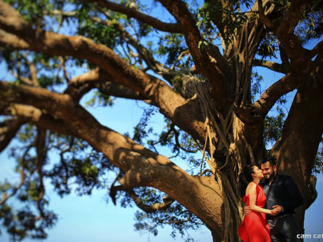 GET SUSTAINABLE WITH YOUR WEDDING PLANNING IN GOA!
