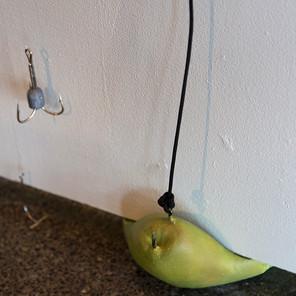 A Pair of Pears - pear