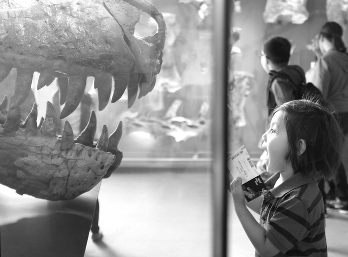 The Natural History Museum of LA:  I Heart Dinosaurs