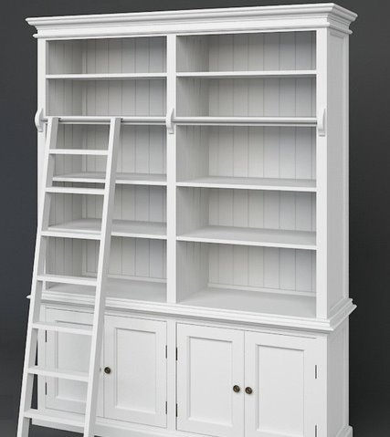 Medium Library Unit with Ladder