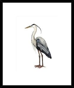 Hamptons Bird Artwork 4