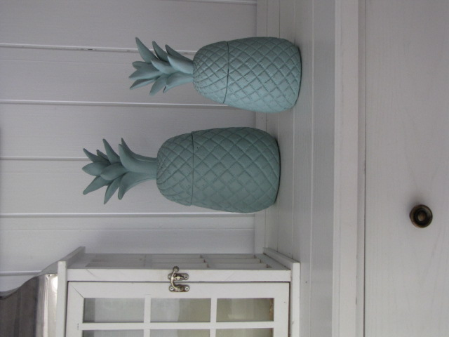 Ceramic Pineapple pot set
