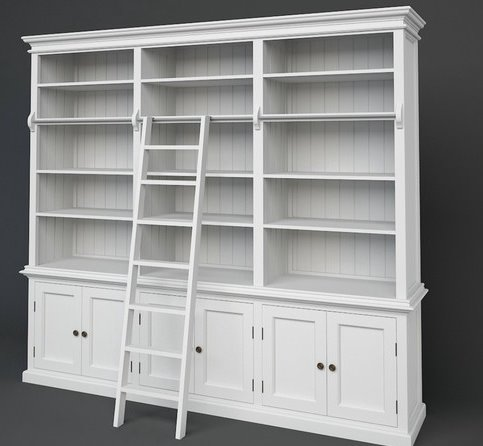 Large library unit with ladder
