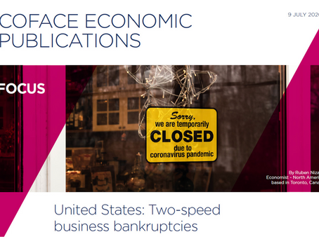 COFACE: U.S. - TWO-SPEED BUSINESS BANKRUPTCIES