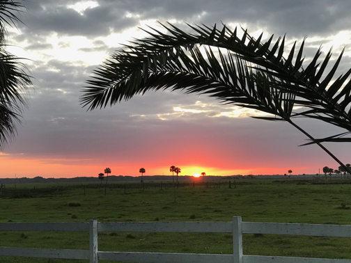 sunriseSM.jpg