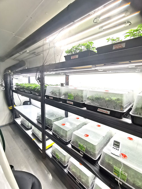 optimisation lumineuse Cannabis CBD Suisse, luminaires led horticole F.O.G the futur of grow X-CLONE PRO 30, grow light, led grow light, boutures, clone