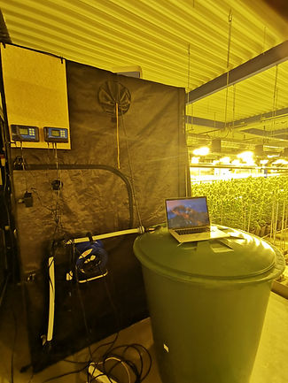 Installation d'automate pour l'eclairage led, optimisation lumineuse, eclairage horticole led F.O.G the futur of grow