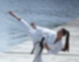 karate-1.png