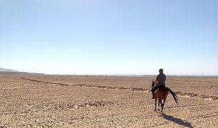 Desert Riding Tour.jpg