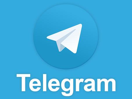 GO TO ALPHA THE WOLF ON TELEGRAM