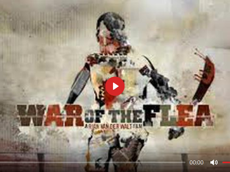 WAR OF THE FLEA - 2011 DOCUMENTARY - THE GENOCIDE OF WHITE PEOPLE BY ANTI-WHITE NON-WHITES IN AFRICA