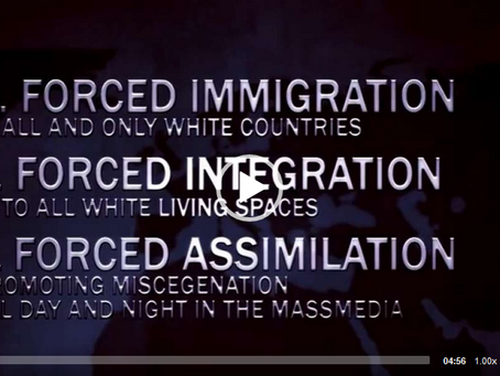 WHITE GENOCIDE - RISE UP AGAINST THE GENOCIDE OF YOUR RACE BEING COMMITTED BY ANTI-WHITE NON-WHITES
