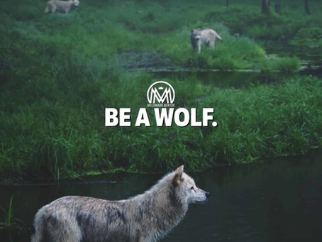 BE A WOLF.