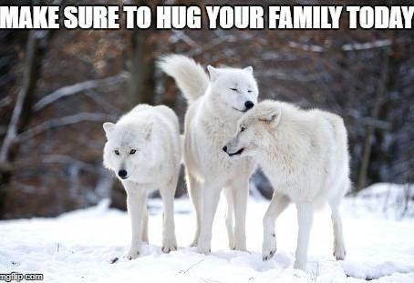 MAKE SURE TO HUG YOUR FAMILY TODAY