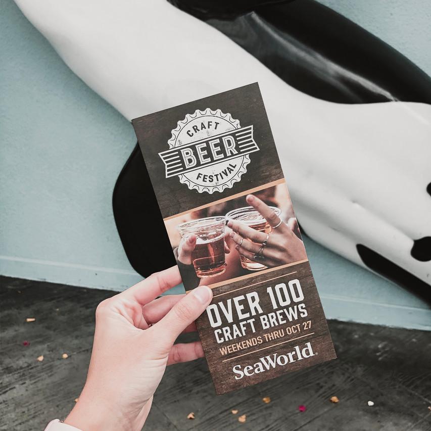Craft Beer Festival Pamphlet