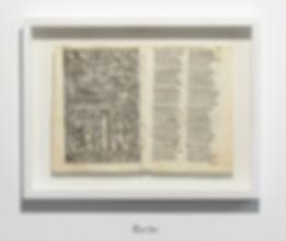 Tommaso Spazzini Villa, pagine