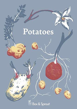 Potatoe Booklet#.jpg