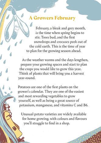 Potatoe Booklet##.jpg