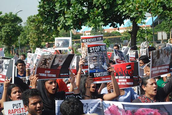 animal rights march.JPG