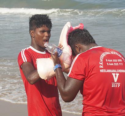 Vinayaka Chaturthi 3.jpg