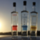 Copy of 500 Vodka flavors.png