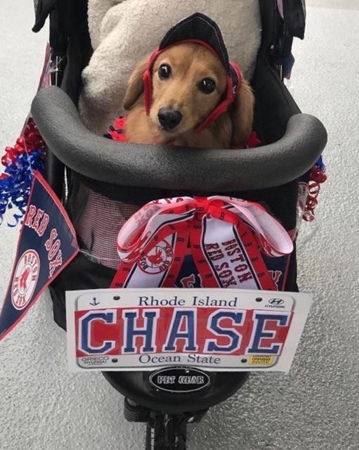 Chase Manhattan, Rhode Island