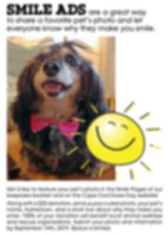 smile ad for website_edited.jpg