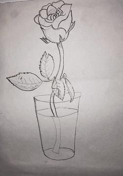 Karine - desenho de observação