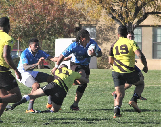 Brujos romp over Scorps, finish Fall season in first place.