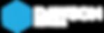 Dawson Networks Logo