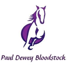 Bloodstock Agent