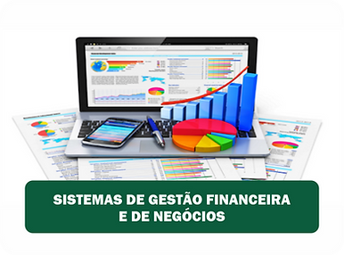 SISTEMAS DE GESTÃO.png
