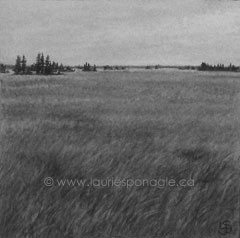 Landscape # 177