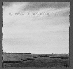 Landscape # 164