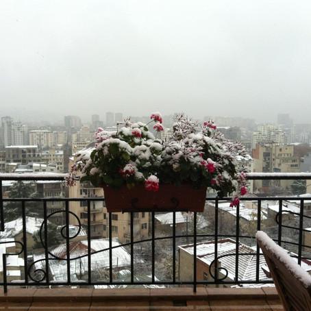 שלג על עירי וקשת בליבי