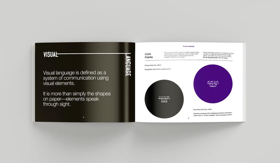 Paradigm Luxury Group Brand Guidelines