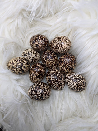 6 Pack Scottish Red Grouse Hatching Eggs (23 Days)