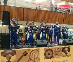 mariachis.en.medellin44