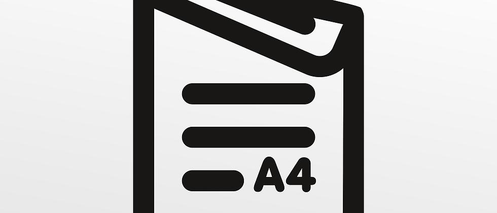 DIN A4 200 g/m2, sw, 2-seitig
