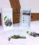 Grafik, Gestaltung, Produktionskoordination, Produktbroschüre, Flyer, Muldenflyer, Maag Recycling AG