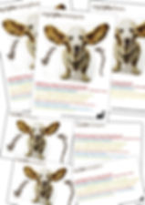 Gestaltung, Satz, Produktionskoordination, Orgelplus Plakat, Flyer, Evangelisch-reformierte Kirchgemeinde Winterthur-Mattenbach