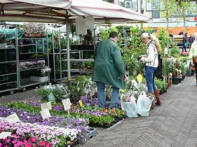 Voorjaarsmarkt Houten