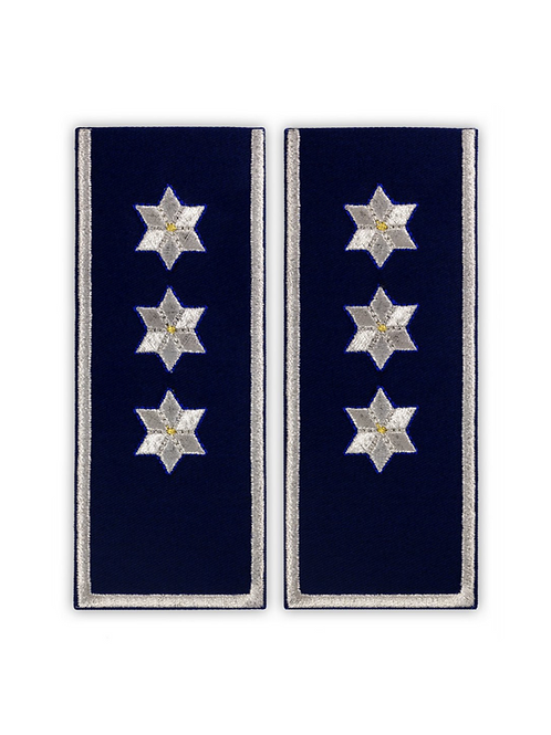 Grade Ofiteri de Politie