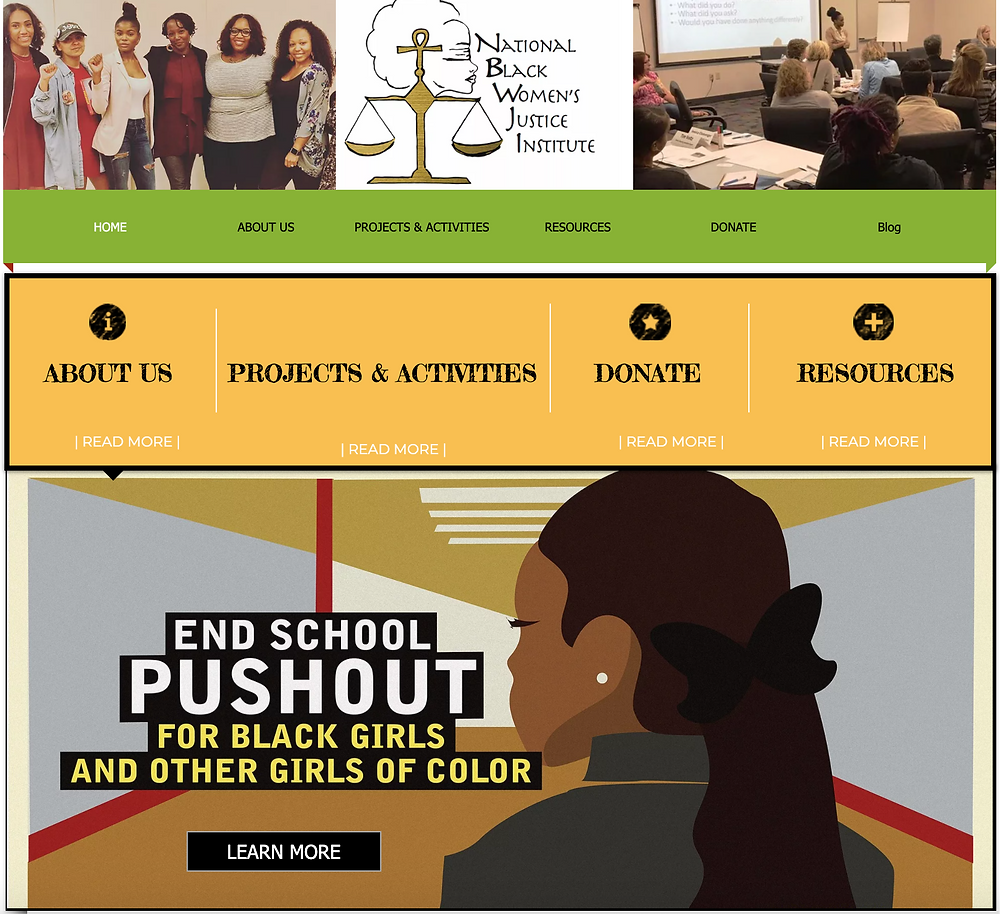 Black Girl Digital: Covers Black Non Profits - National Black Womens Justice Institute