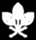agriteco logo hojas.png