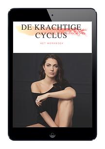 De-krachtige-cyclus-cover-werkboek-ipad-