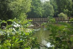 Paserelle à l'étang