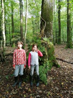 Les petits naturalistes vagabondent en forê; Jules et Bérénice super constructeurs de cabane 100% nature!