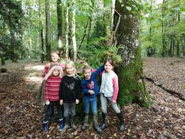 Les petits naturalistes vagabondent en forêt